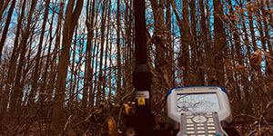 Tree Location Surveys